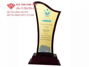 Cúp Gỗ Đồng GĐ26