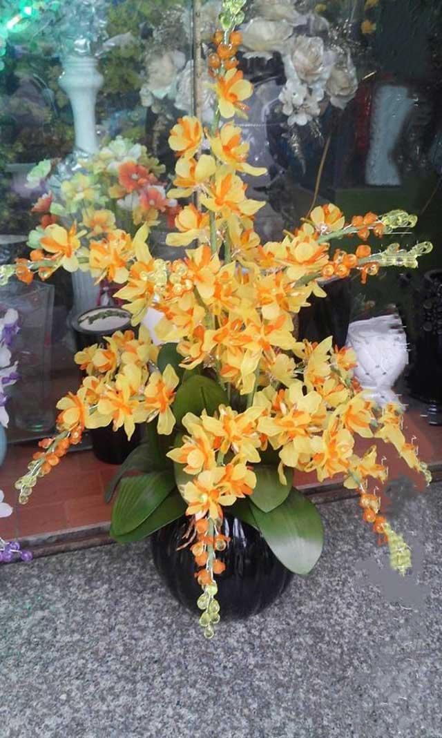 Hoa lan pha lê dendro vàng