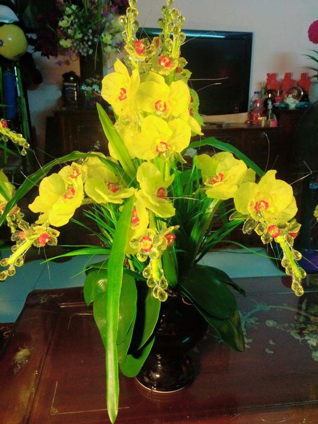 Hoa lan pha lê làm quà tặng