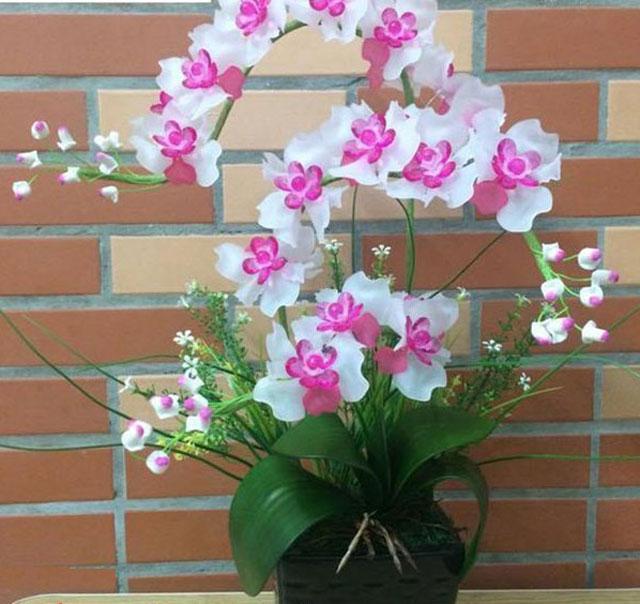 Quà tặng hoa lan pha lê cao cấp