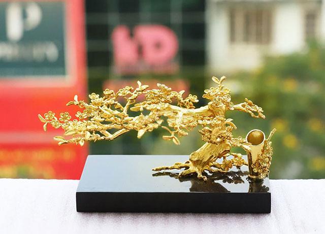 Chậu cây vàng tài lộc phong thuỷ